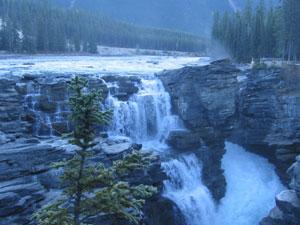 Jasper National Park - Athabasca Falls