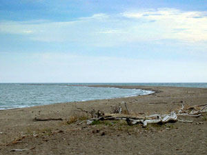 Point Pelee National Park - southernmost tip of Canada