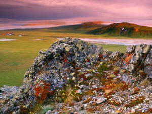 Ivvavik National Park - Arctic Coastal Plains
